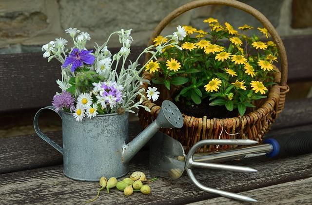 prezent dla miłośnika ogrodu